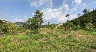 Bán lô đất vườn xã Lộc Thành, huyện Bảo Lâm