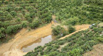 Cần bán 9 sào đất có suối tại xã Lộc Thành, Bảo Lâm