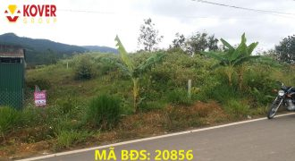 Cần bán lô đất 15x48m tại xã Đại Lào, Tp Bảo Lộc