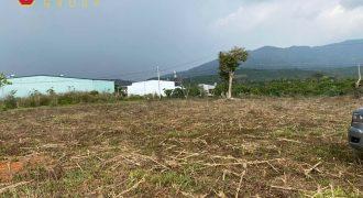 Cần bán đất đường Đinh Công Tráng xã Lộc Châu