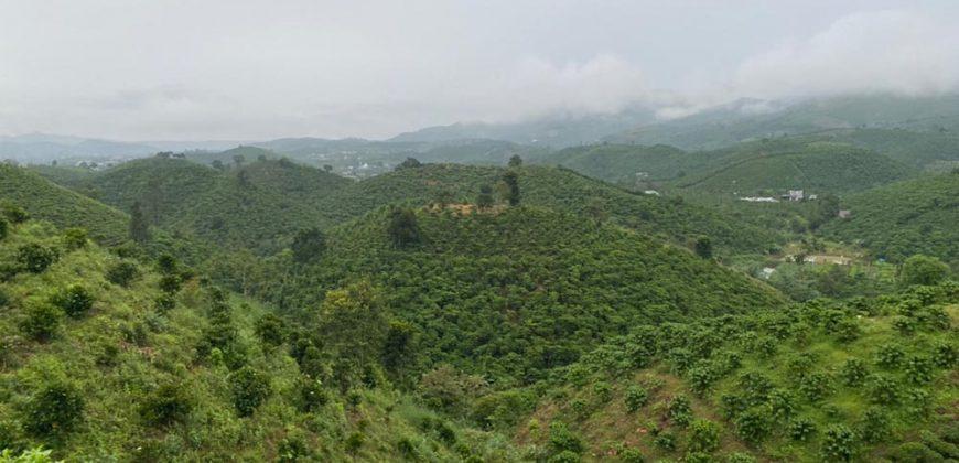 Bán đất view đồi đường Blaosere xã Đại Lào