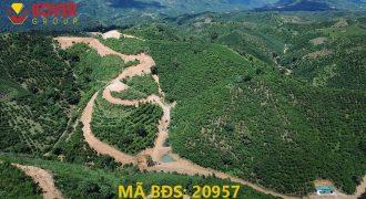 Cần bán 18000m2 đất có hồ tại thôn 10C, xã Lộc Thành