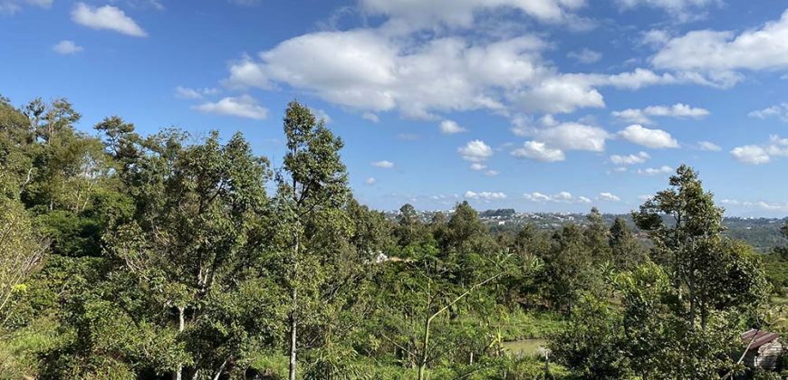 Bán 2 sào đất vườn tại xã Lộc Sơn, Thành phố Bảo Lộc