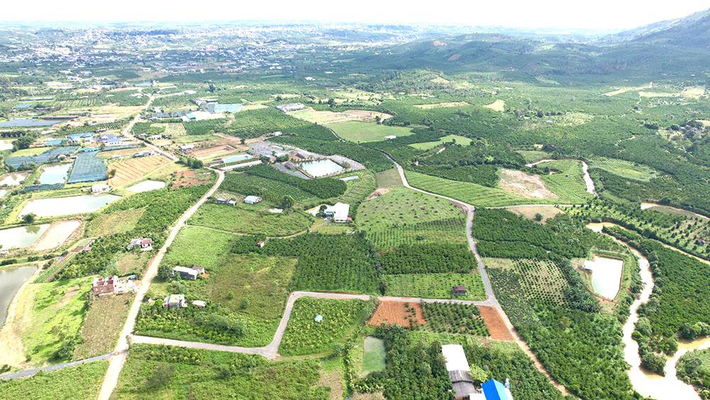 Diện tích đất vườn Bảo Lộc lớn, giá bán rẻ