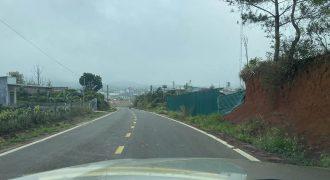 Bán 11000m2 đất tại thôn 6, xã Đại Lào