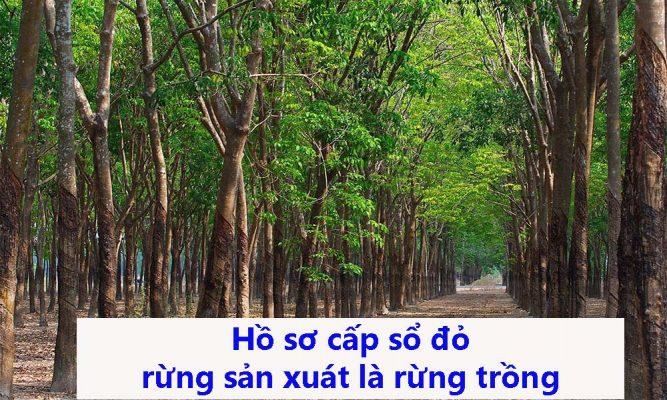 Hồ sơ cấp sổ đỏ rừng sản xuất là rừng trồng