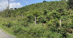 Bán lô đất 80x41m tại thôn 6 xã Đại Lào
