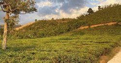 Bán lô đất 2000m2 tại đường Blaosere xã Đại Lào