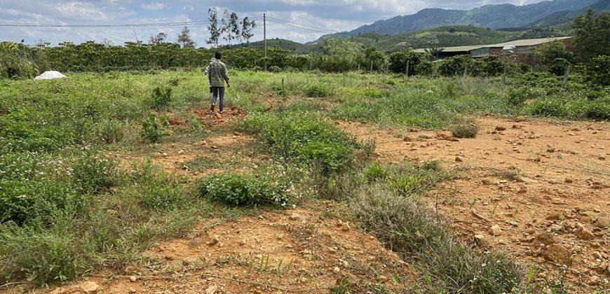 Bán 2453m2 đất đường Đinh Công Tráng, xã Đại Lào