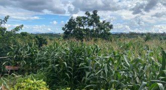 Bán lô đất 22000m2 xã Lộc An, huyện Bảo Lâm chính chủ, giá rẻ
