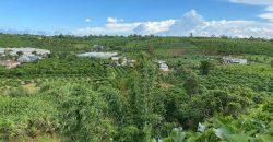 Bán lô đất mặt tiền đường nhựa 2600m2 xã Lộc An, huyện Bảo Lâm