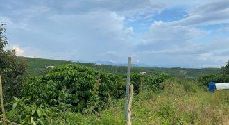 Bán đất vườn 12000m2 xã Lộc An, huyện Bảo Lâm giá rẻ