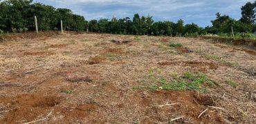 Bán lô đất 10x50m xã Lộc An, huyện Bảo Lâm chính chủ, giá rẻ