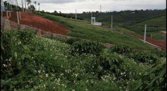 Bán lô đất thôn 11, xã Lộc An, Bảo Lâm view đẹp, full thổ cư