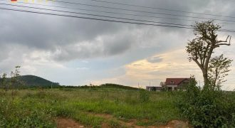 Bán lô đất 10000m2 đường Đinh Công Tráng, Bảo Lộc giá tốt