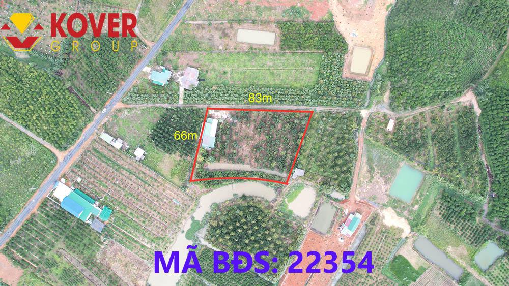 Đất vườn trái cây diện tích 83x66m