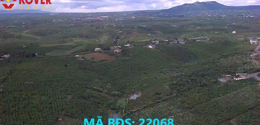 Bán lô đất 3100m2 xã Lộc An, huyện Bảo Lâm giá rẻ, view đẹp