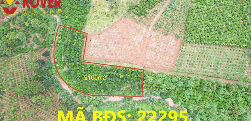 Bán lô đất giáp suối 2100m2 xã Lộc An, huyện Bảo Lâm giá rẻ