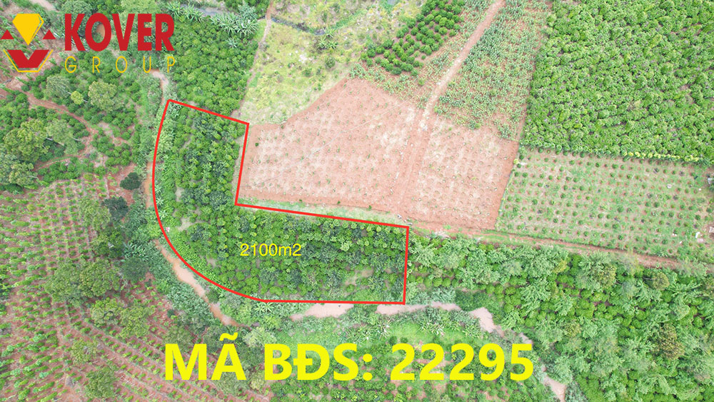 Lô đất 2100m2 xã Lộc An đang bán