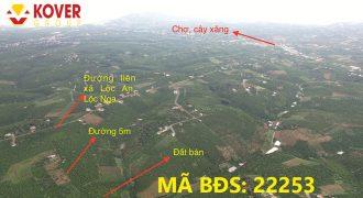 Bán lô đất nở hậu, view đẹp xã Lộc An, huyện Bảo Lâm