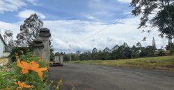 Bán lô đất đẹp gần Quốc Lộ 20 xã Lộc Nga, Bảo Lộc full thổ cư