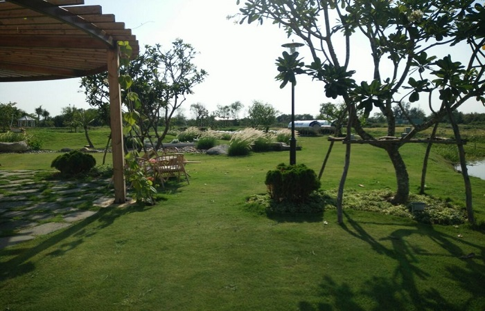Kinh nghiệm mua bán đất vườn