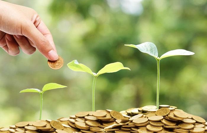 Nếu mua đất vườn làm nhà ở bạn phải mất một số chi phí duy trì hàng tháng