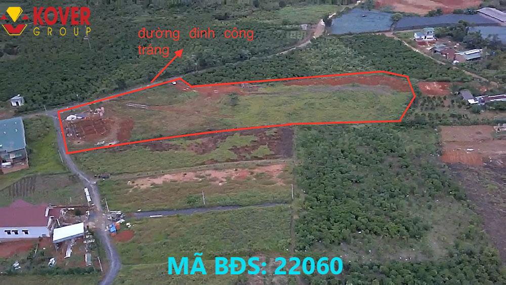 Lô đất 10000m2 xã Lộc Châu đang bán