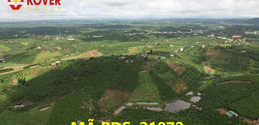 Bán lô đất view săn mây tuyệt đẹp xã Lộc An, huyện Bảo Lâm