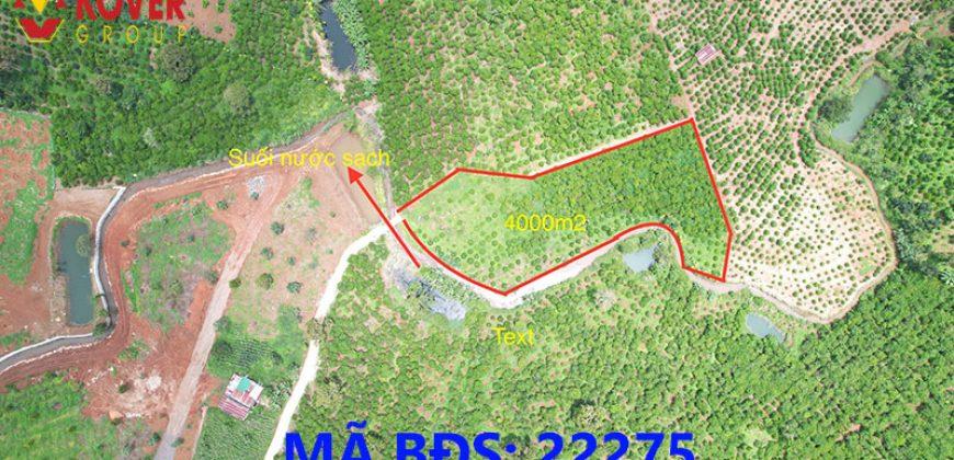 Bán lô đất 4000m2 thổ cư xã Lộc An, huyện Bảo Lâm giá rẻ