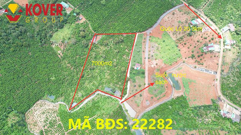 Vị trí lô đất 7000m2 xã Lộc An, huyện Bảo Lâm đang bán