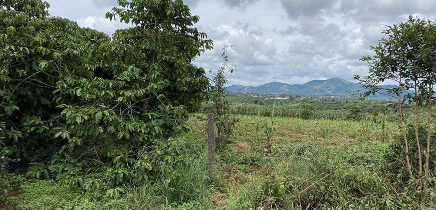 Bán lô đất 16x80m xã Lộc Đức full thổ cư giá chỉ 960 triệu
