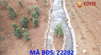 Bán lô đất giáp suối 7000m2 xã Lộc An, huyện Bảo Lâm