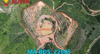Bán lô đất view đồi 24000m2 xã Đại Lào, Thành phố Bảo Lộc