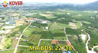 Bán lô đất full thổ cư 2100m2 xã Lộc Châu, Bảo Lộc