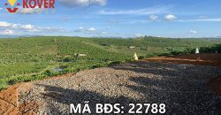 Bán lô đất vườn có sẵn hồ 6500m2 xã Lộc An, huyện Bảo Lâm