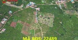 Bán lô đất 2 mặt tiền xã Lộc Đức, huyện Bảo Lâm