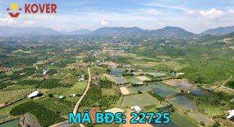 Bán lô đất 10mx50m đã có sổ sẵn xã Lộc Châu, Bảo Lộc giá rẻ
