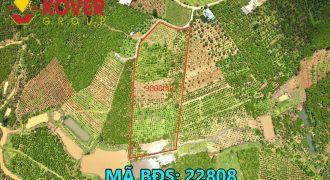 Bán lô đất vườn xã Lộc An, huyện Bảo Lâm giá chỉ 1 triệu/m2