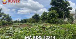 Bán lô đất vườn xã Lộc An, huyện Bảo Lâm giá chỉ 750 triệu