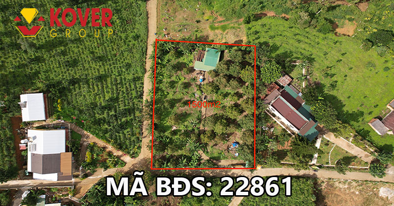Lô đất 35mx45m full thổ cư xã Đại Lào, Bảo Lộc đang bán