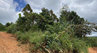 Bán đất có 150m mặt tiền đường xã Lộc Đức, huyện Bảo Lâm