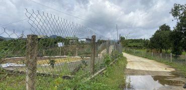 Bán 10x90m đất xã Đại Lào, Thành phố Bảo Lộc